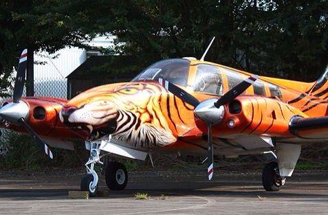 Civilian Tiger Tiger Meet  Display Teams, etc Pinterest