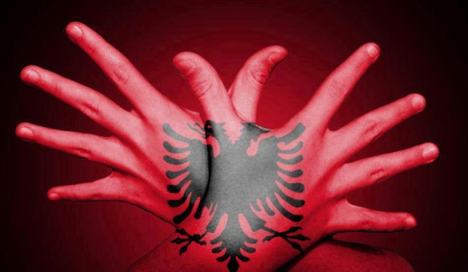 Albanian Flag With Images Albania Flag Albanian Flag Tirana