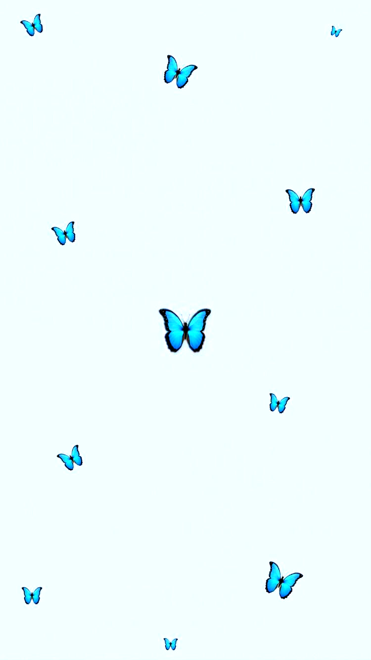 Aesthetic Butterfly Wallpaper Tumblr Babyblue Blue Minimalistic Schmetterling Hintergrund Iphone Hintergrund Iphone Blaue Tapete