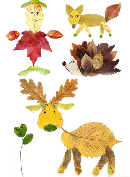 lavoretti con le foglie (work with leaves)