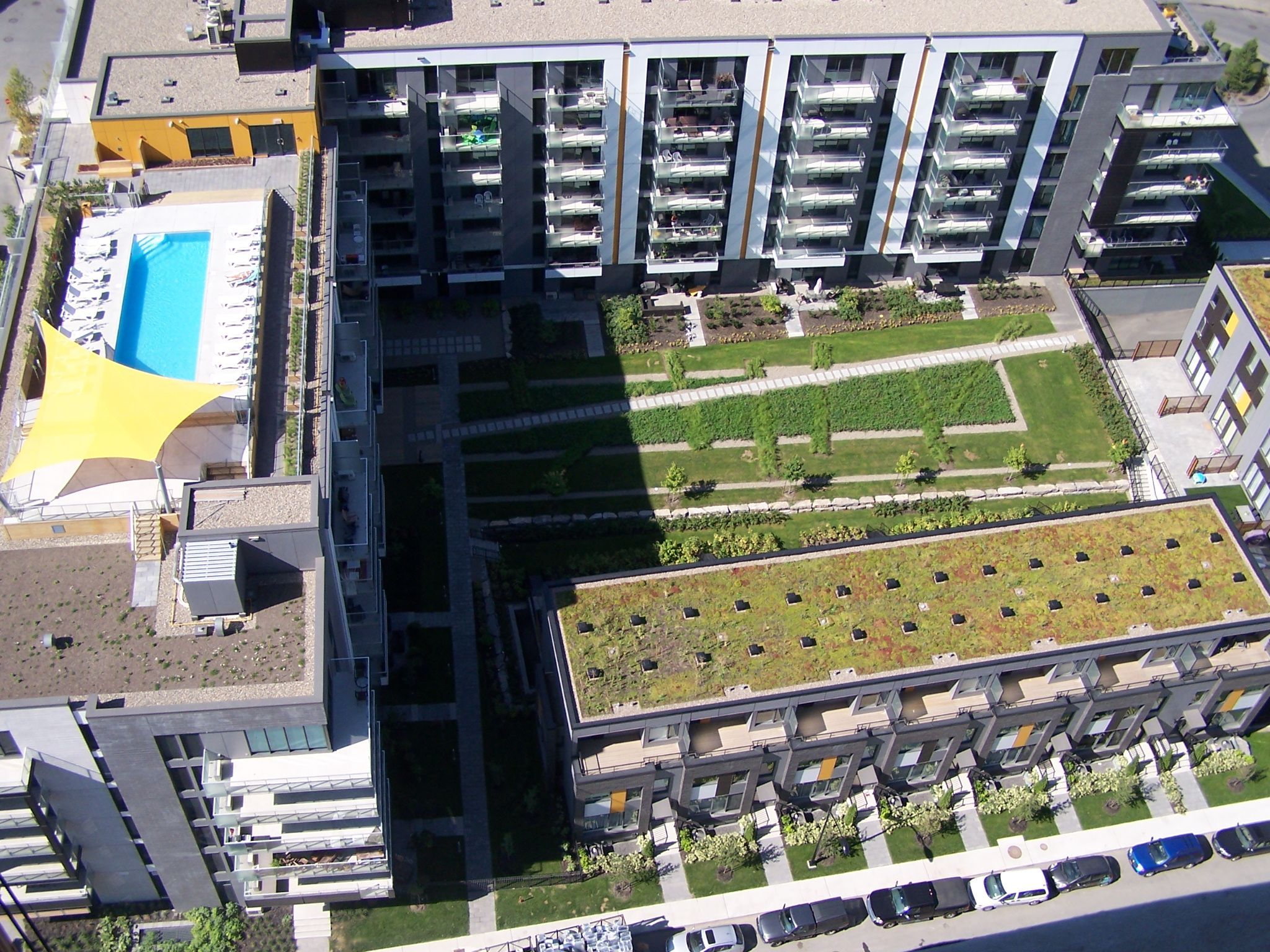 Toiture végétale et piscine sur le toit du ZUNI. Green roof and rooftop pool.