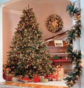 Flocked Hawthorne Prelit Tree Christmas Tree Wallpaper Cool Christmas Trees Pre Lit Christmas Tree