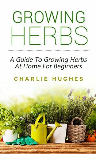 Growing Herbs At Home A Guide To Growing Herbs At Home For