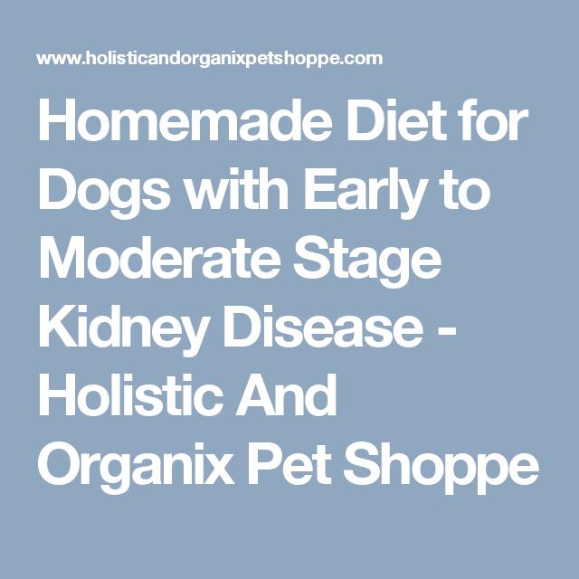 Homemade Diet For Dogs With Early To Moderate Stage Kidney Disease