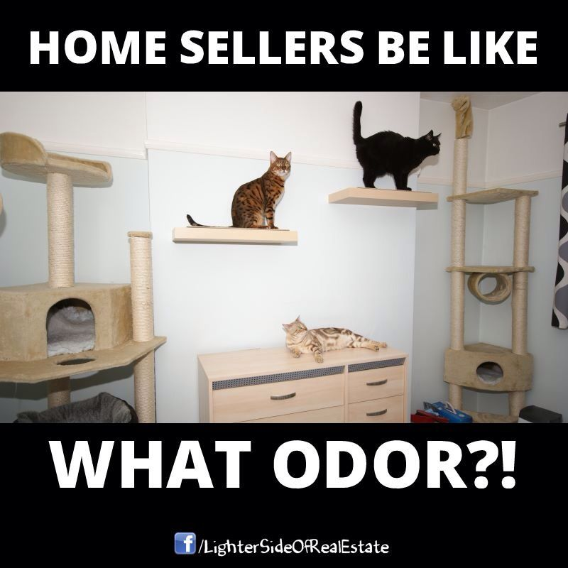 real estate humor images Yahoo Image Search Results