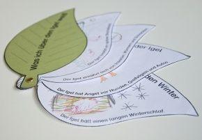 kindergarten-kigaportal-preschool-scuola-del-infanzia-bltterfcher | lapbook vorlagen, kinder