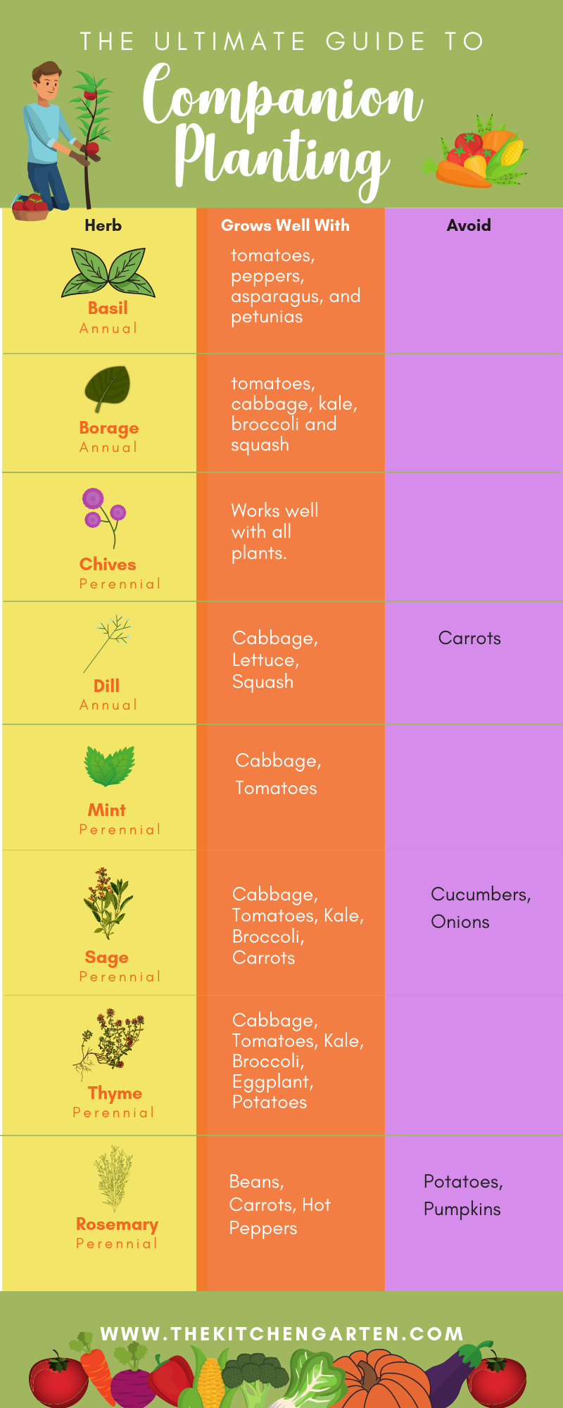The Ultimate Companion Planting Guide For Vegetables 400 x 300