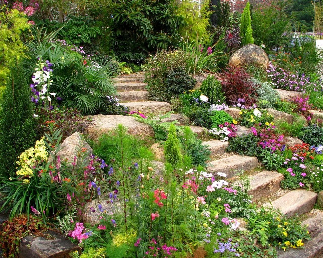 21+ Fleurs de rocailles jardin ideas in 2021