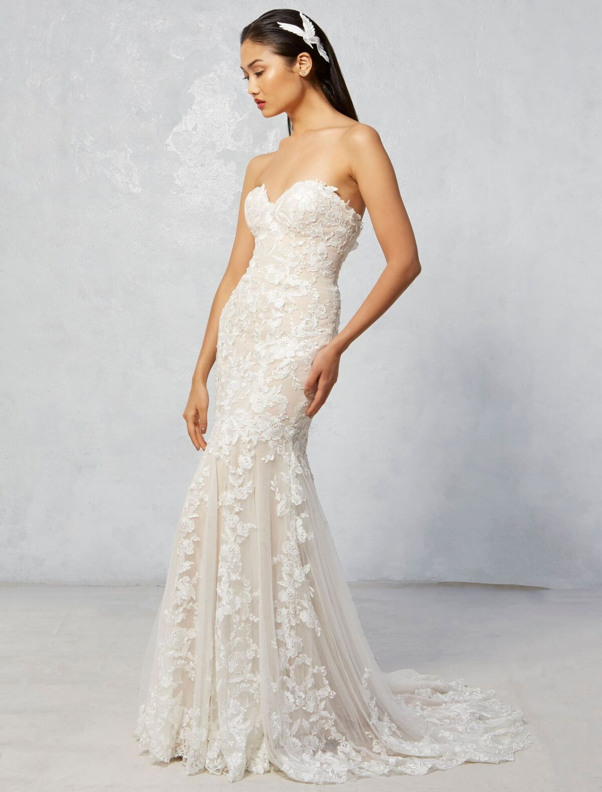 Raven | Ivy & Aster Fall 2017 Collection | strapless nude lace ...