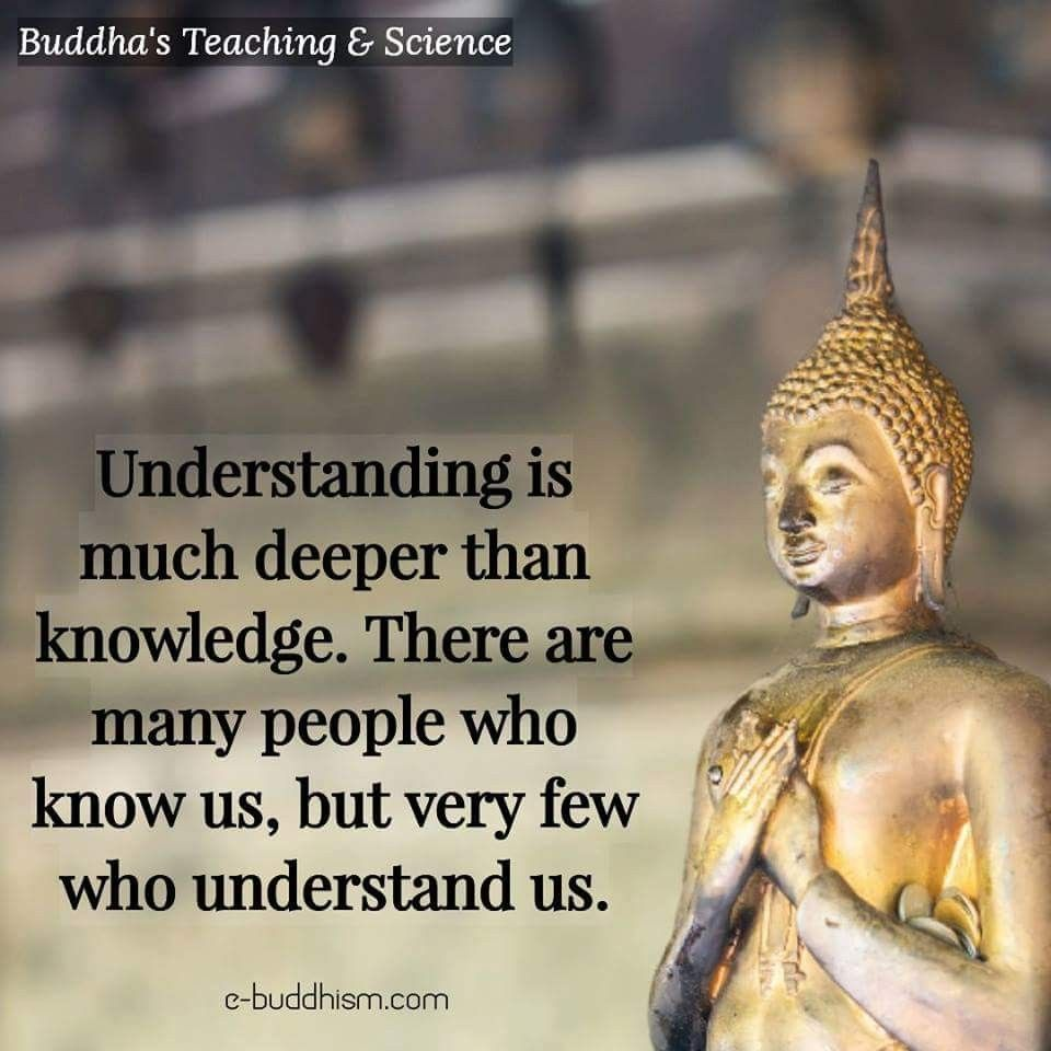 Buddha Quotes About Friendship Pinyoga Breaths On Quotes  Pinterest  Buddha Buddhism And