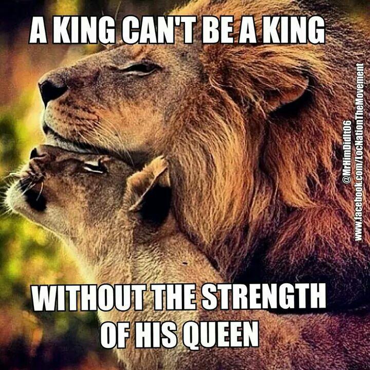 Read It Lion Quotes Lion Love Warrior Quotes