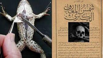 شكل الجن المسلم