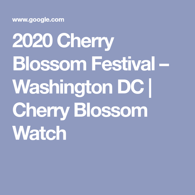 2021 National Cherry Blossom Festival Cherry Blossom Festival Blossom Festival