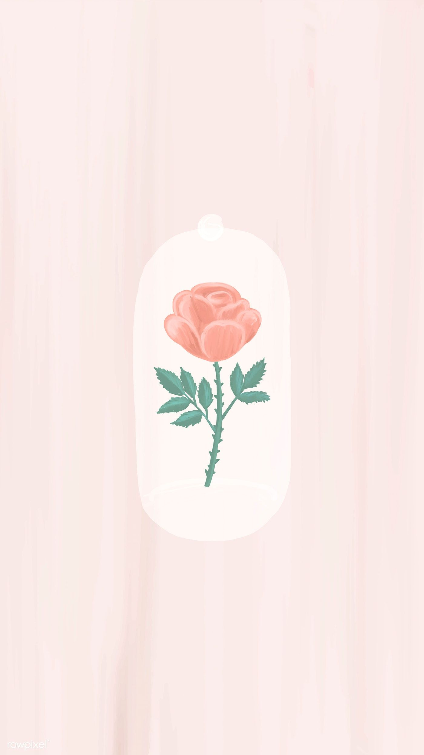 Cute wallpapers for phone