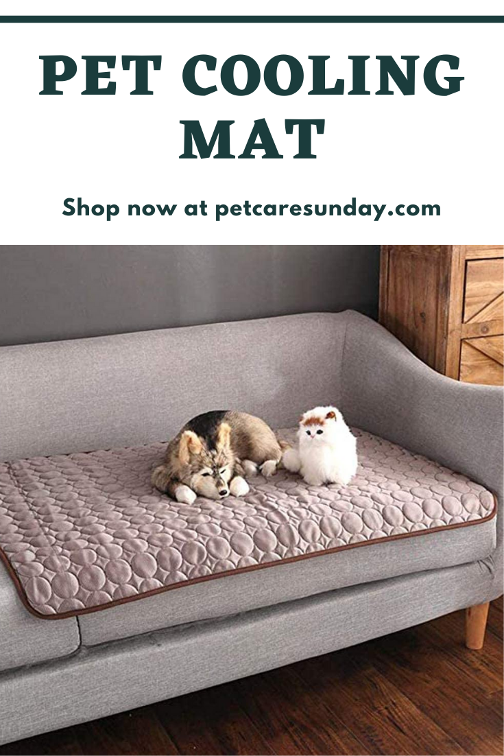 Pet Cooling Mat In 2020 Pet Cooling Mat Pets Cooling Mattress Pad