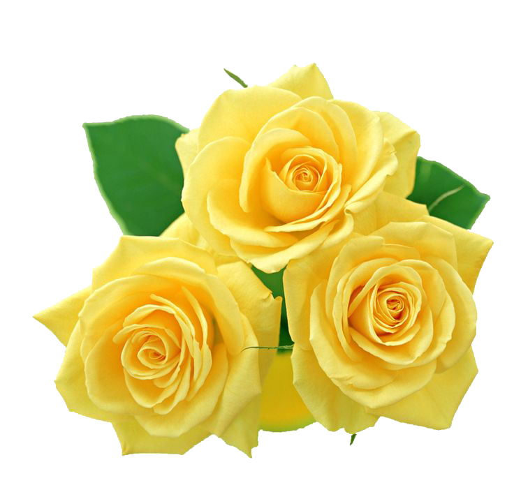 Yellow Flowers Bouquet PNG File | PNG Mart | Other Tubes for Artwork ...
