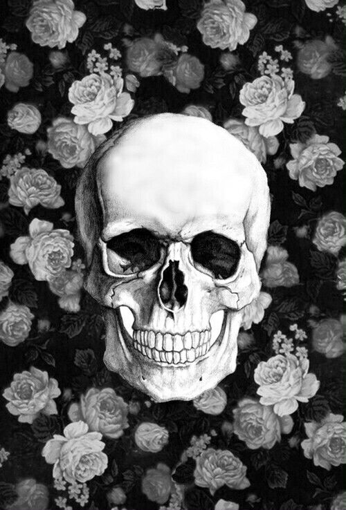 Skull Wallpaper With Roses At The Backround Skull Art Skull