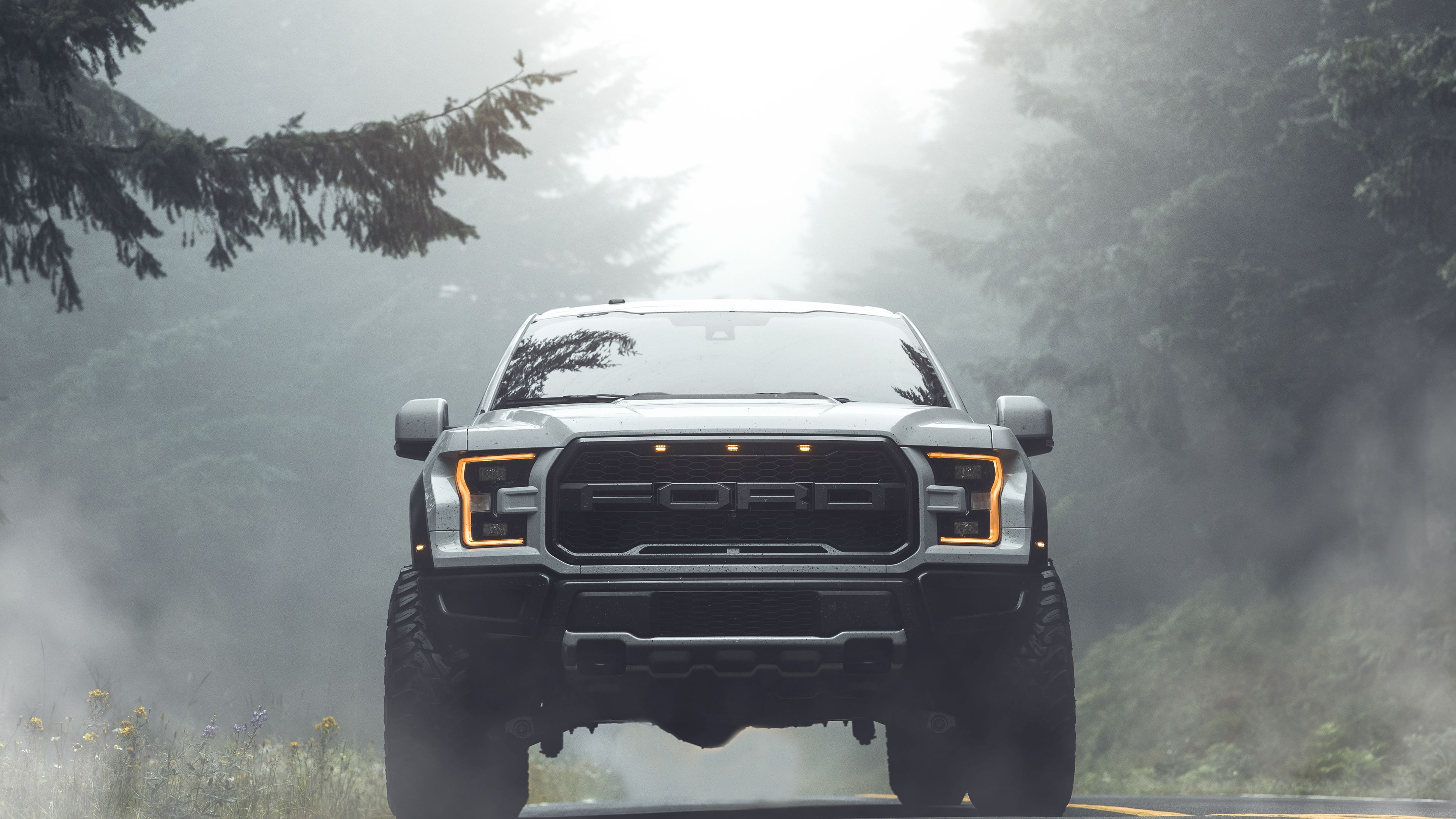 Wallpaper 4k Ford Raptor 2019 Cars Wallpapers 4k Wallpapers