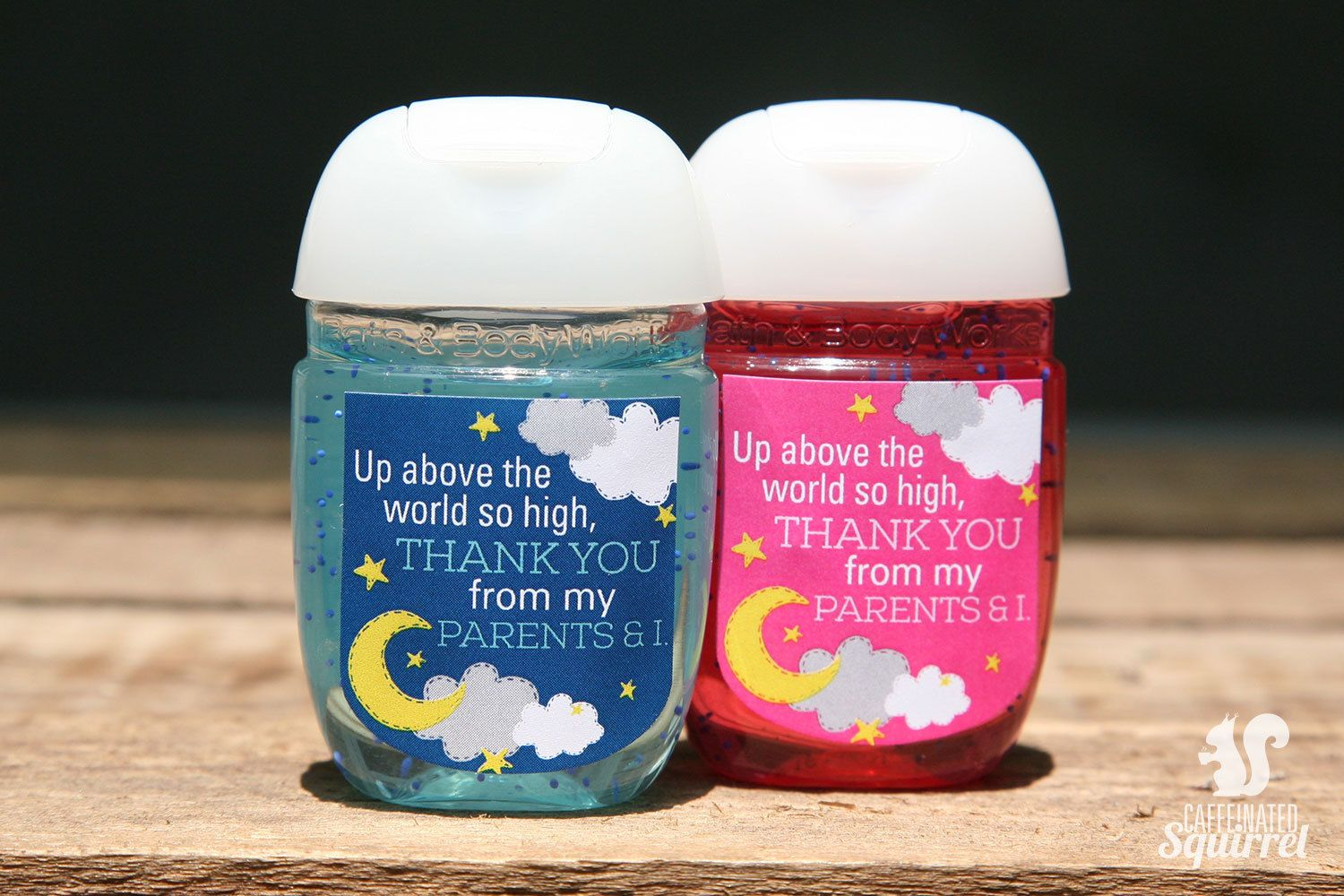 Twinkle Twinkle Sanitizer Labels Sanitizer Not Included