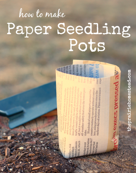 how to make seedling containers from newspaper