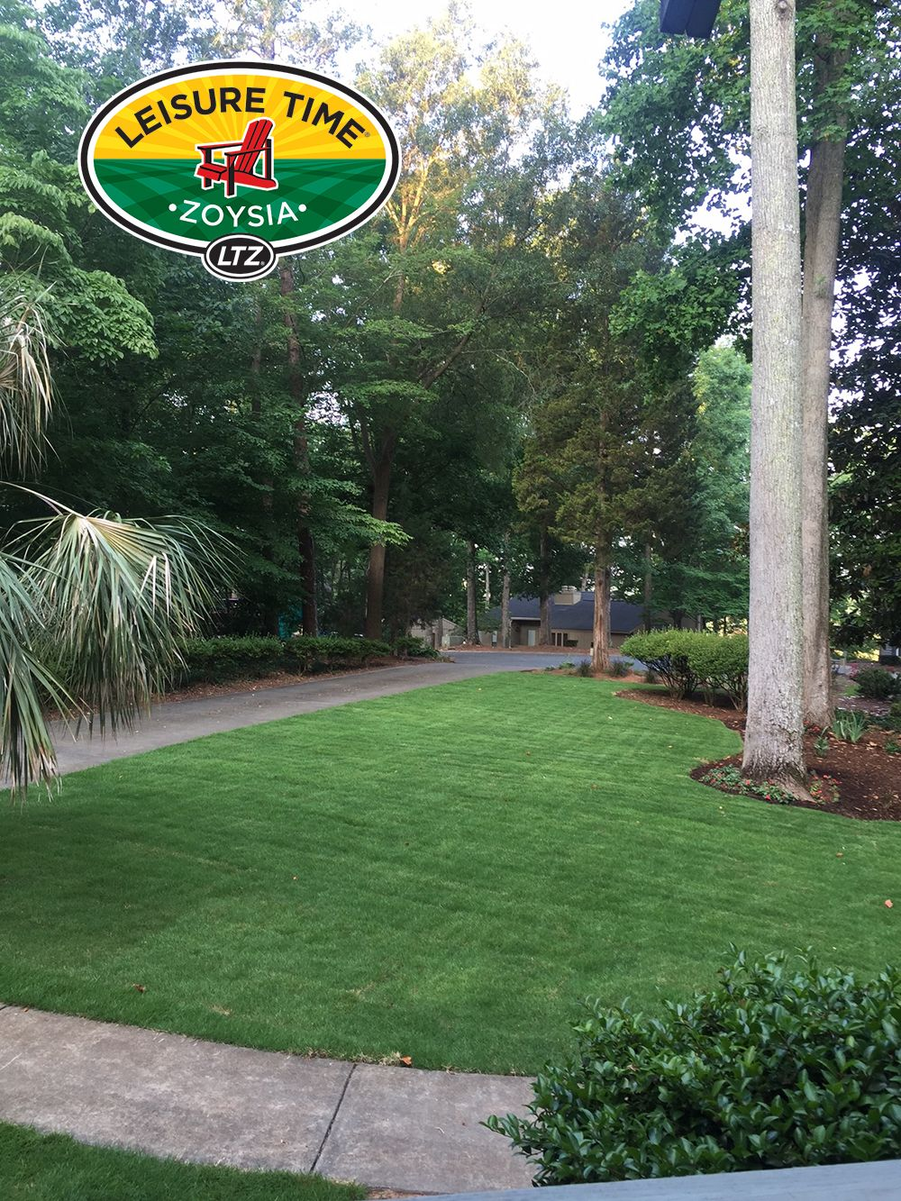 Top landscapers in charlotte nc - This Looks Like The Grounds Of A Beach Resort A Homeowner Near Charlotte Nc