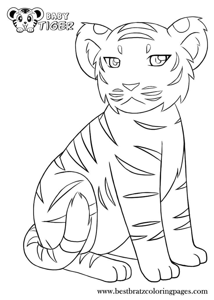 Related image   COLORING PAGES   Pinterest   Animales y Dibujo