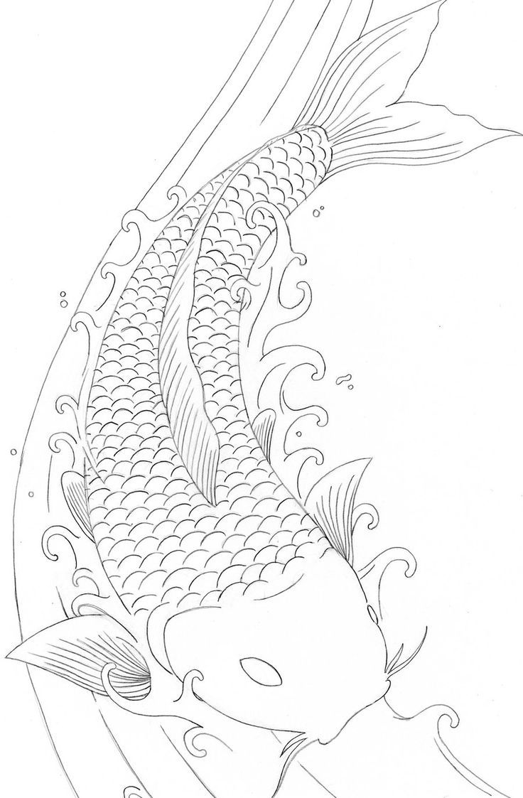 Koi Fish Coloring Pages Free … | Fisch zeichnung ...