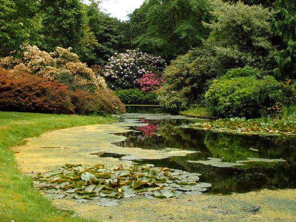 Botanische Tuin Rotterdam : Botanische tuin rotterdam arboretum trompenburg