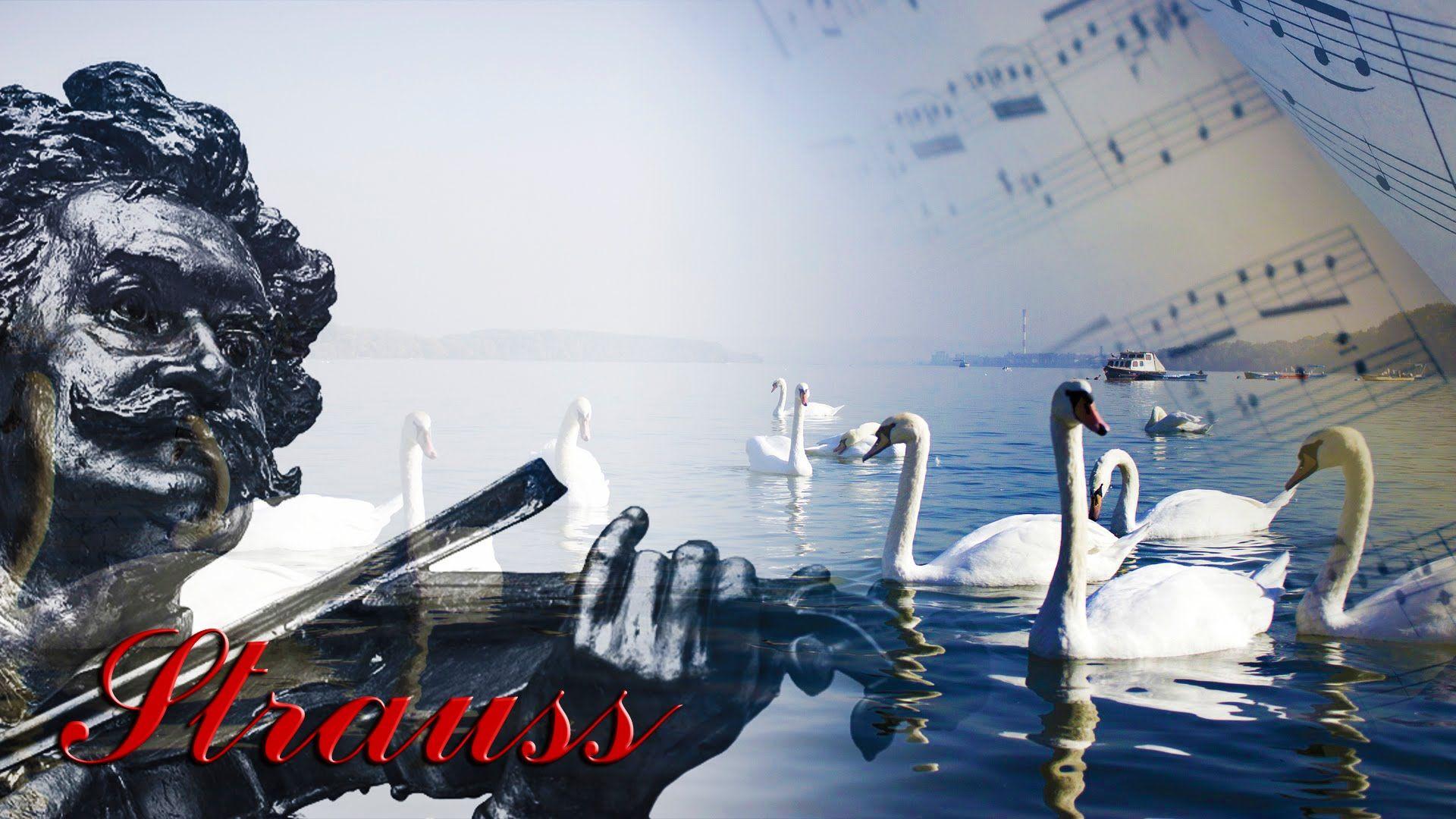 El Danubio Azul 1 Hora Johann Strauss Ii Vals Original Música Clásica De Orquesta Muchas Gracias Por Ver Est El Danubio Azul Musica Clasica Musica Variada