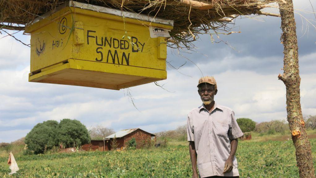 Fazendeiros africanos usam colmeias para preservar agricultura e elefantes  http://w500.blogspot.com.br/