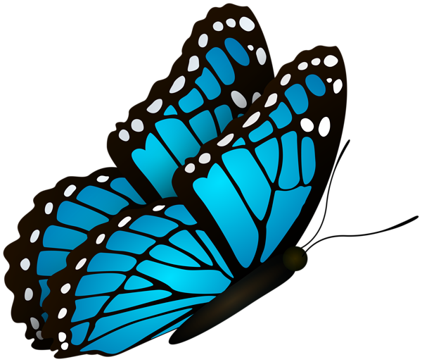 Flying Butterfly Blue Clipart Image Clip Art Clipart Images Free Clip Art