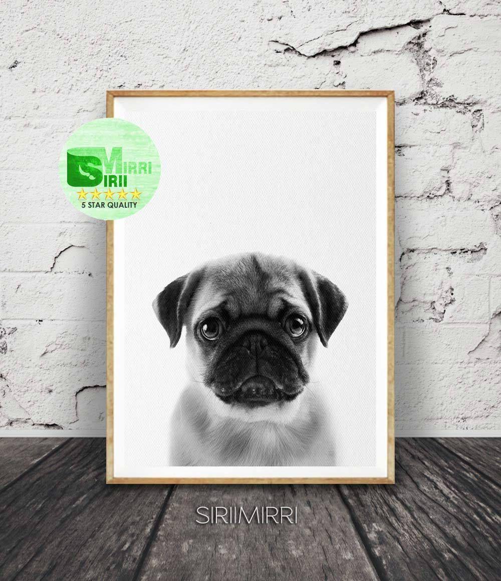 Pug Print Pug Wall Art Pug Art Dog Animal Print Dog Art Pug
