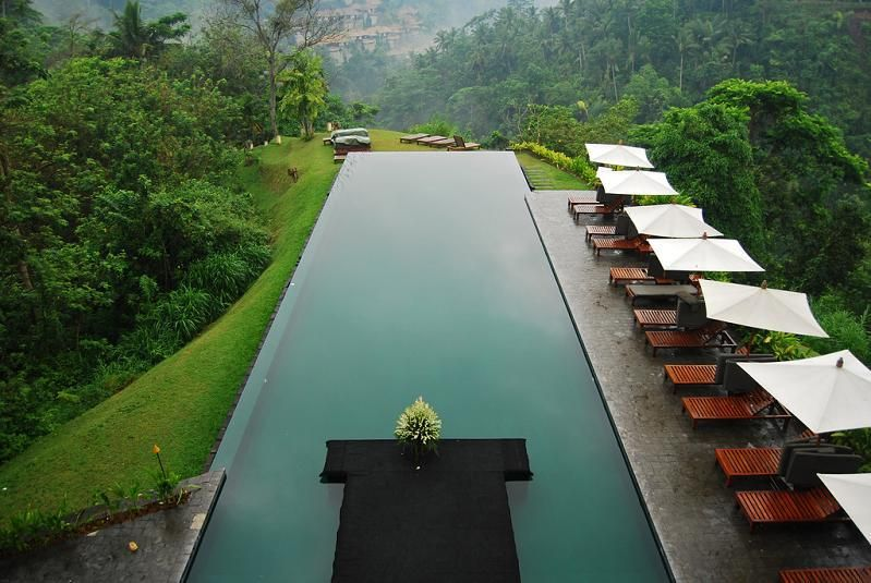 infinity pool aerial shot alila ubud bali 25 stunning infinity pools around the world - Rectangle Pool Aerial View
