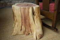 Peachy How To Make A Fake Tree Stump Tree Stump Furniture Tree Camellatalisay Diy Chair Ideas Camellatalisaycom