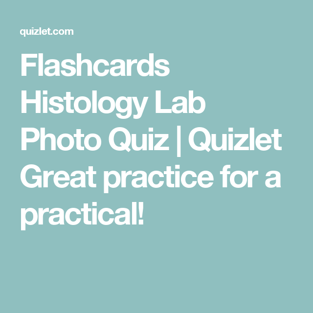 Flashcards histology lab photo quiz quizlet great practice for a flashcards histology lab photo quiz quizlet great practice for a practical ccuart Image collections