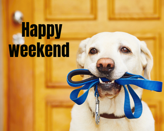 Hope Everyone Is Having A Great Weekend Pet Taxi