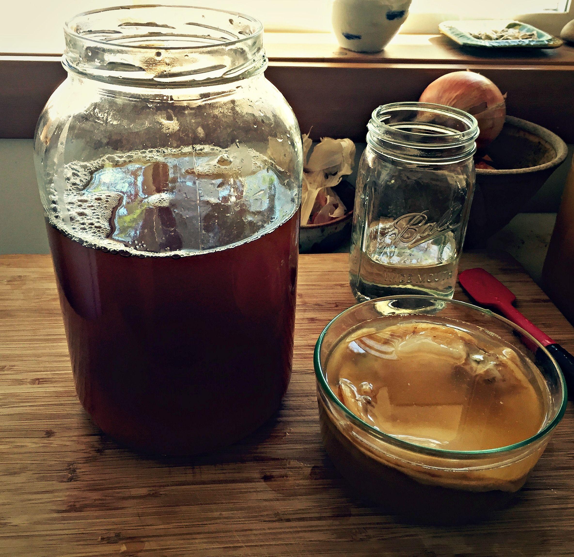 How to Brew Jun Kombucha Recipe booch. Jun kombucha