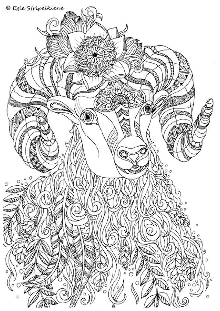 Beautiful Zentangle Horned Goat Artwork By Artist Egle Stripeikiene AWESOME Coloring Pages For AdultsColouring