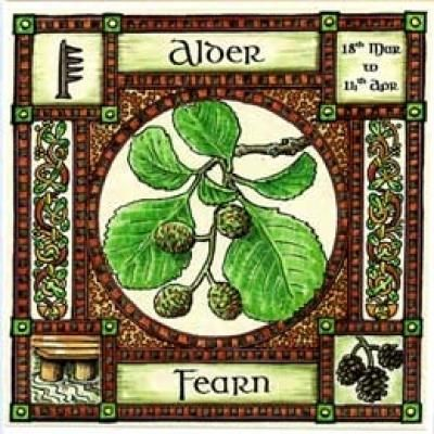 Neo-Druidism - Alder, Ogham name Fearn, rules 18th March ...