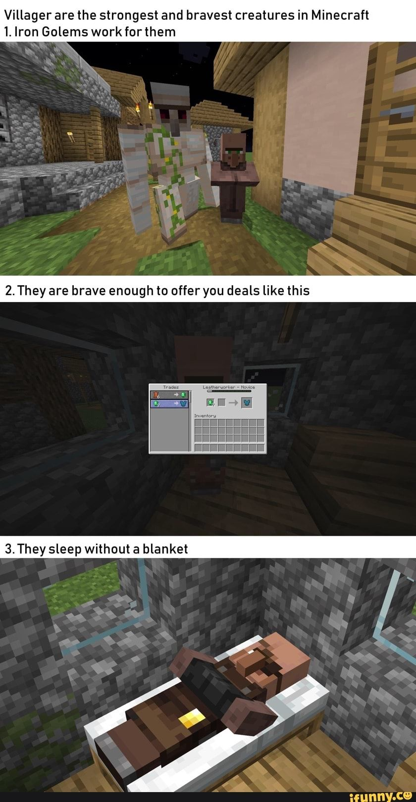 Villager Are The Strongest And Bravest Creatures In Minecraft 1