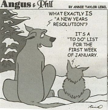 New Year\'s Resolution Check-in | Goals | Pinterest | Humor, Laughter ...