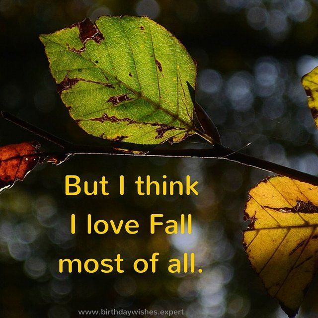 Charming Motivational Quotes In The Heart Of Autumn