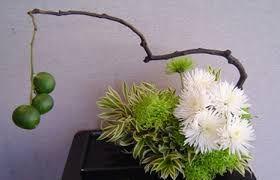 Afbeeldingsresultaat voor sogetsu ikebana japanese flower arranging