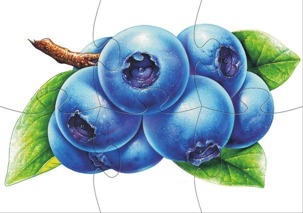 * Fruit puzzel! 9-10