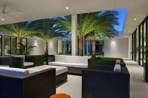 Amazing sit out these palms looking awesome · interior gardenmodern designhome