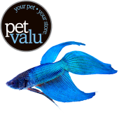 I Love My Local Pet Valu Great People Pet Store