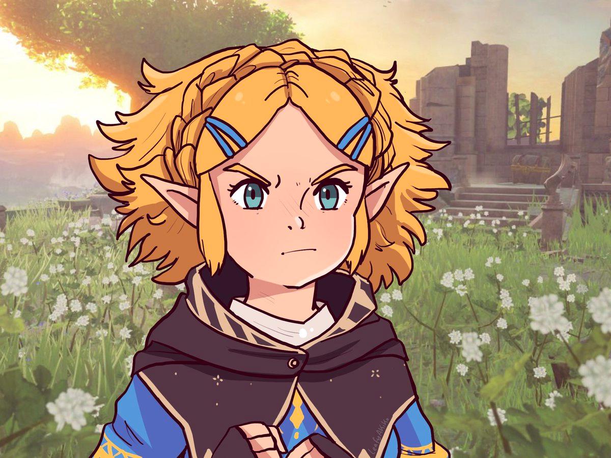 Autumɳ On Twitter Zelda Art Legend Of Zelda Memes Legend Of Zelda