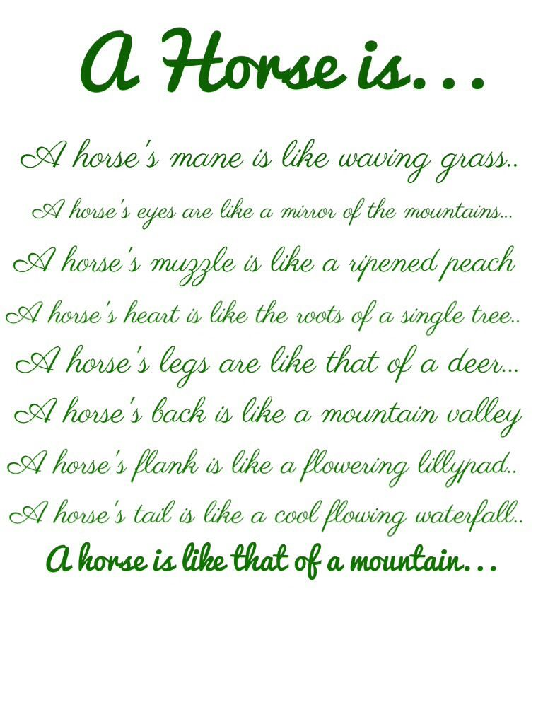 Pics photos quote i wrote for my horse com account s equestrian - My Daughter Wrote This Poem About Horses