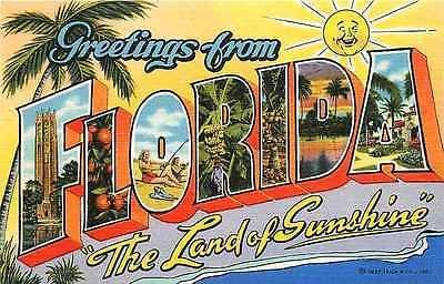 Letter Greetings Beauteous Large Letter Greetings From Florida 1942 Land Of Sunshine Vintage .