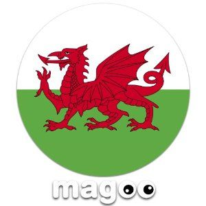 Magoo 110 Wales Cymru Flag Magnetic Car Tax Disc Holder: Amazon.co.uk: Car & Motorbike